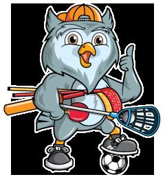 soccerwise owl logo